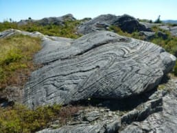 A rock with interesting striations sits in an alpine meadow.