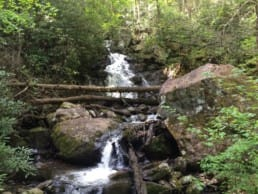 A small waterfall and stream flow through a green forest on the Appalachian Trail.