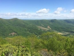 Green mountains and hills are visible on the Appalachian Trail in Virginia.