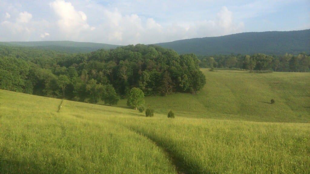 A trail cuts through rolling hills and green farmland on the Appalachian Trail in Virginia.