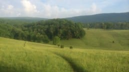 A trail cuts through rolling hills and green farmland on the Appalachian Trail in Virginia.