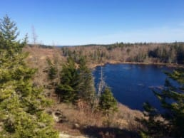 A blue lake sits among a deciduous forest.