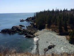 A view from cliffs shows a rocky beach, blue water, and a dense forest.