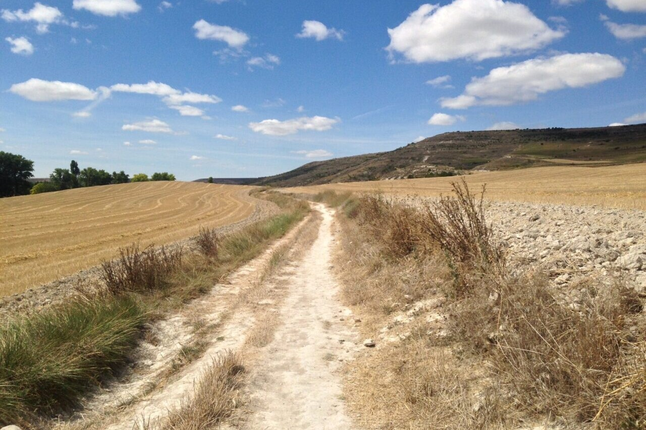 A country road winds through golden fields.