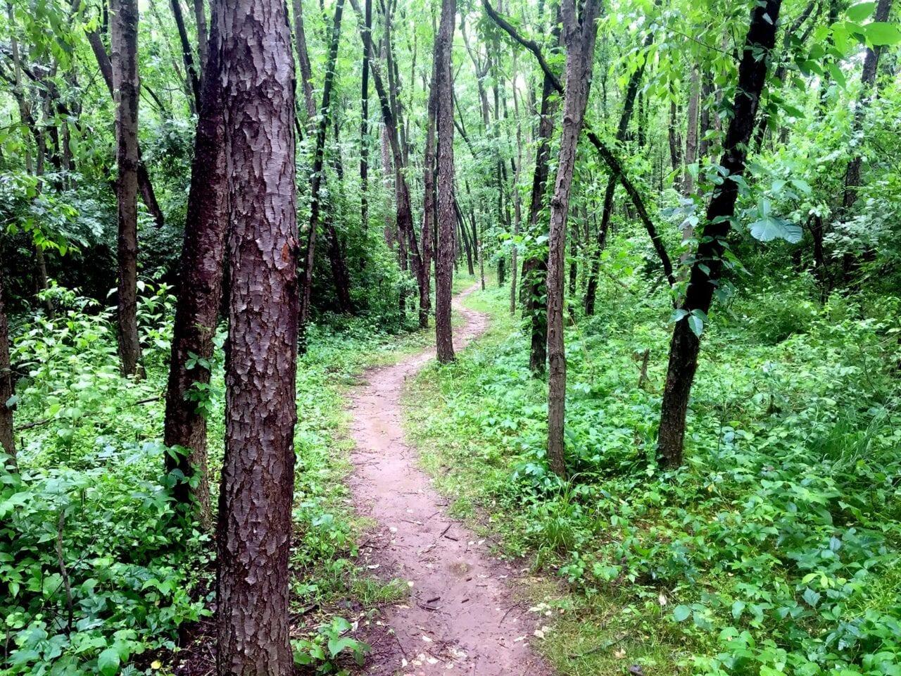 Appalachian Trail Hiking Guide - Guthook Guides