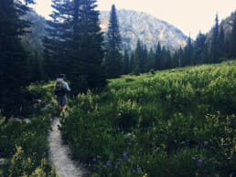 A backpacker walks on a trail through a lush green meadow surrounded by evergreen trees and rocky mountains.