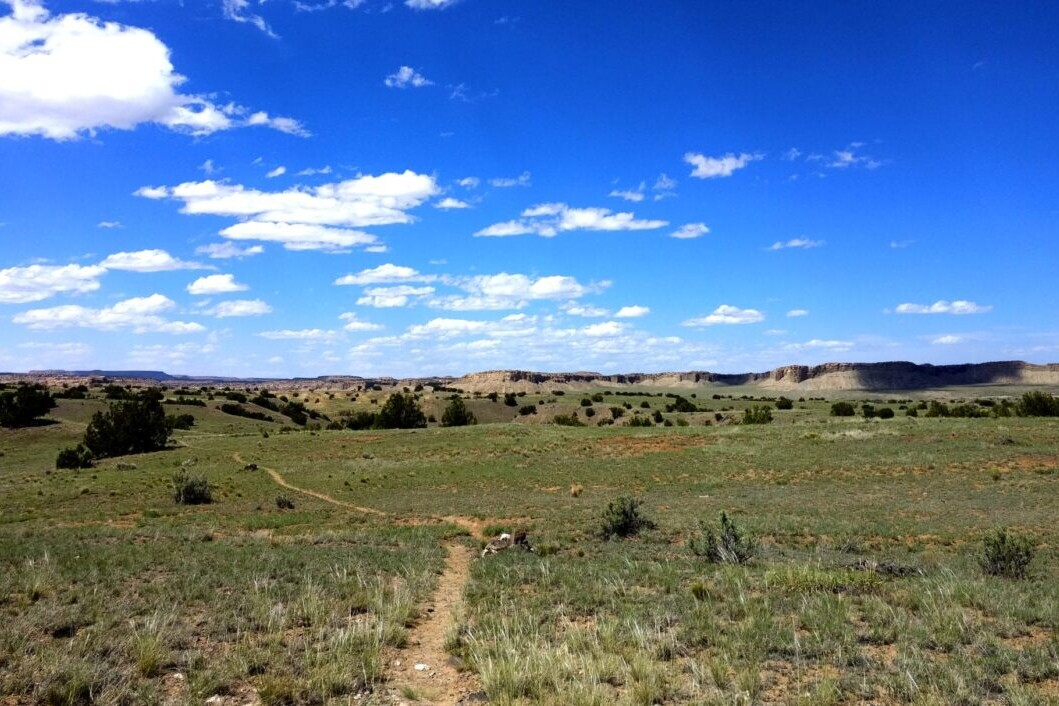 A trail stretches into the distance through a green desert landscape.