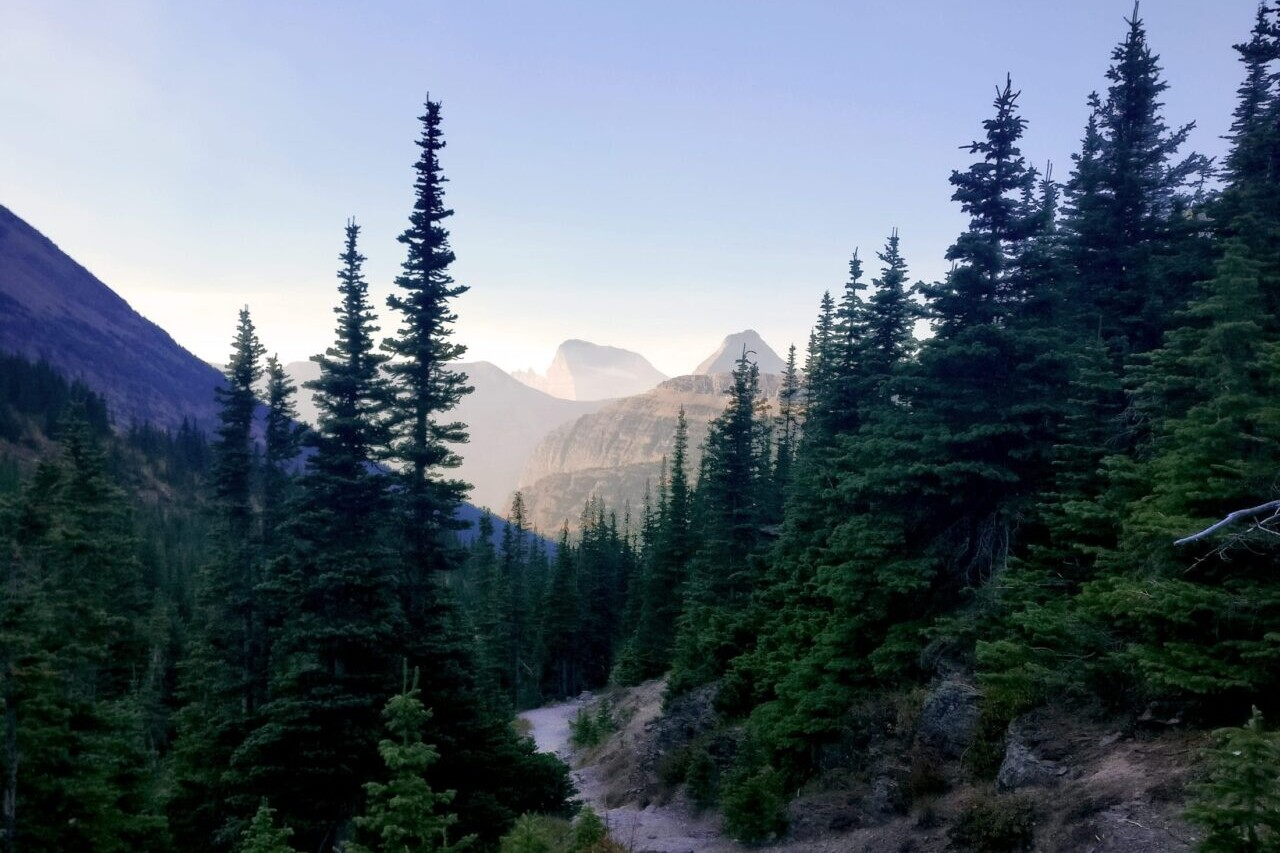 A trail travels through an evergreen forest dowards distant mountains and a sunset.