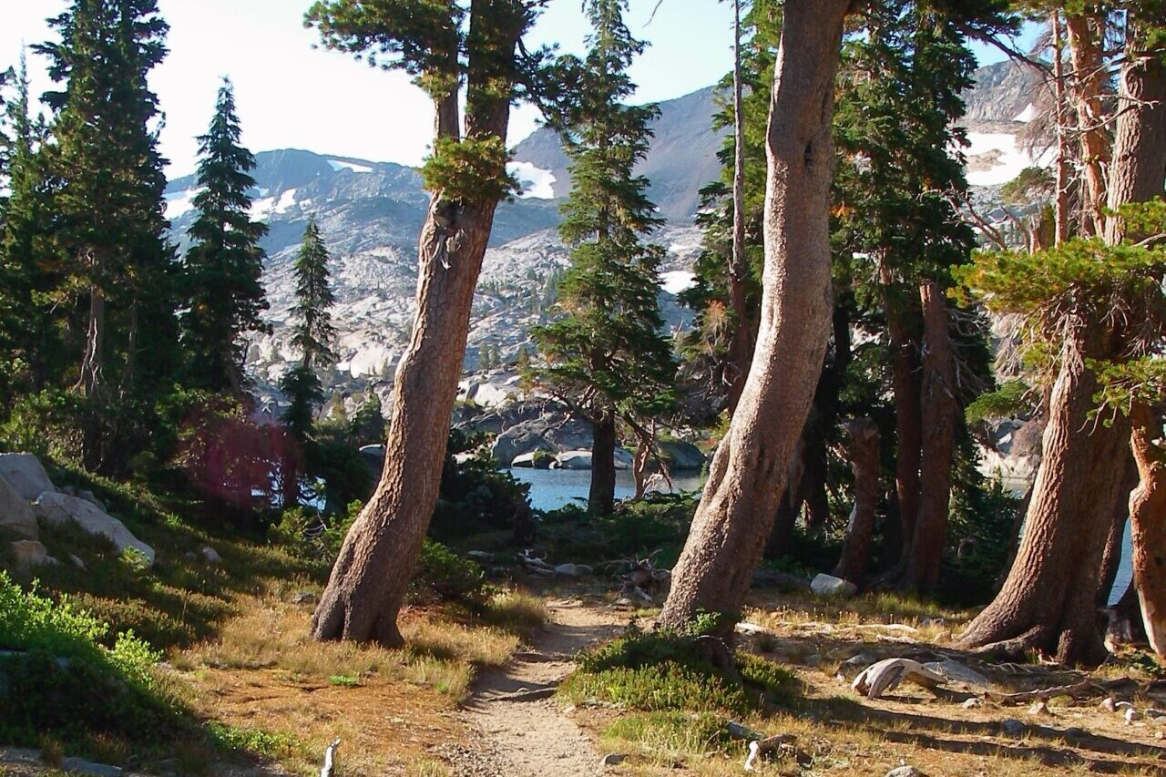 A trail winds through trees to a blue lake.