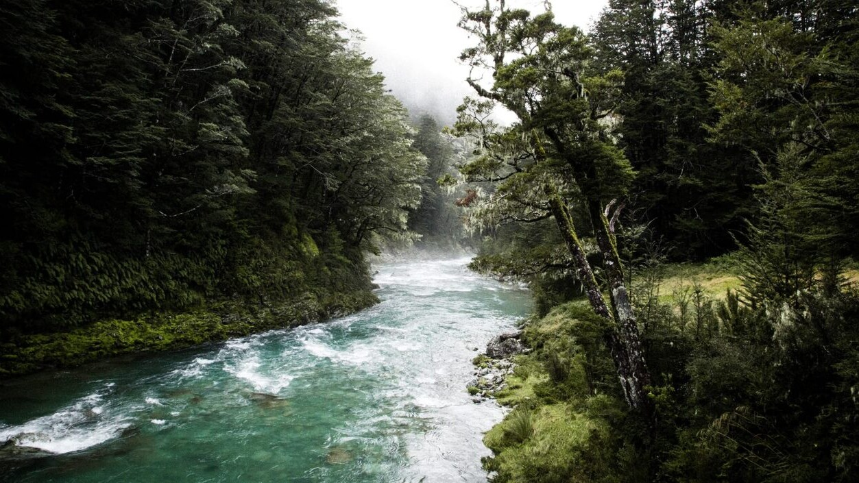 A teal river winds through a lush green forest on New Zealand's Routeburn Track.