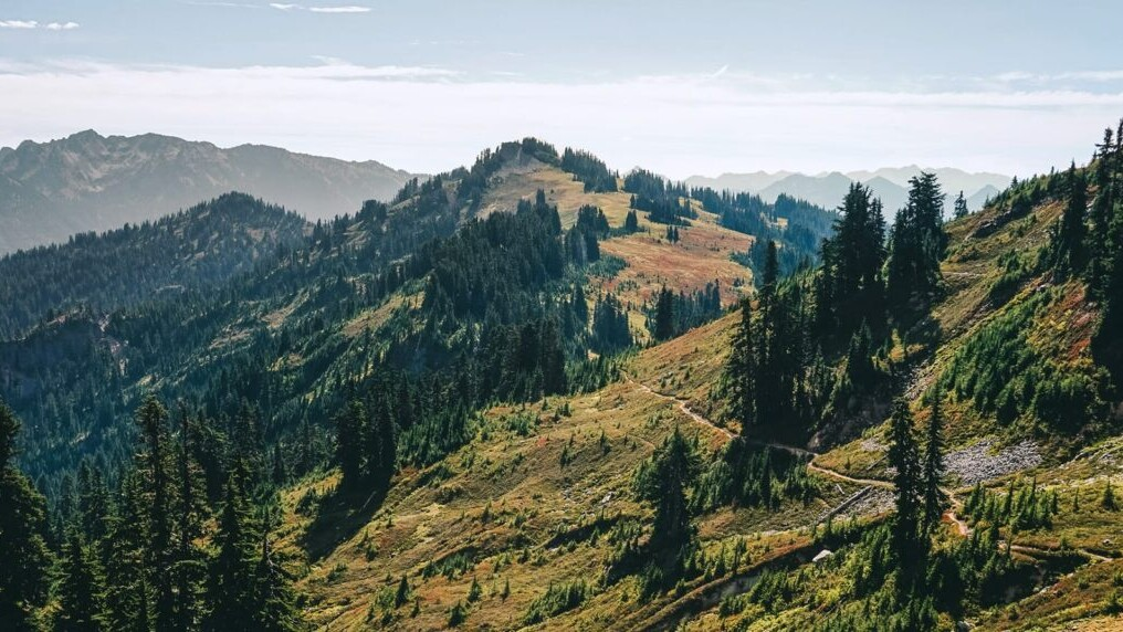 A trail meanders through a green and mountainous landscape on the Pacific Crest Trail.