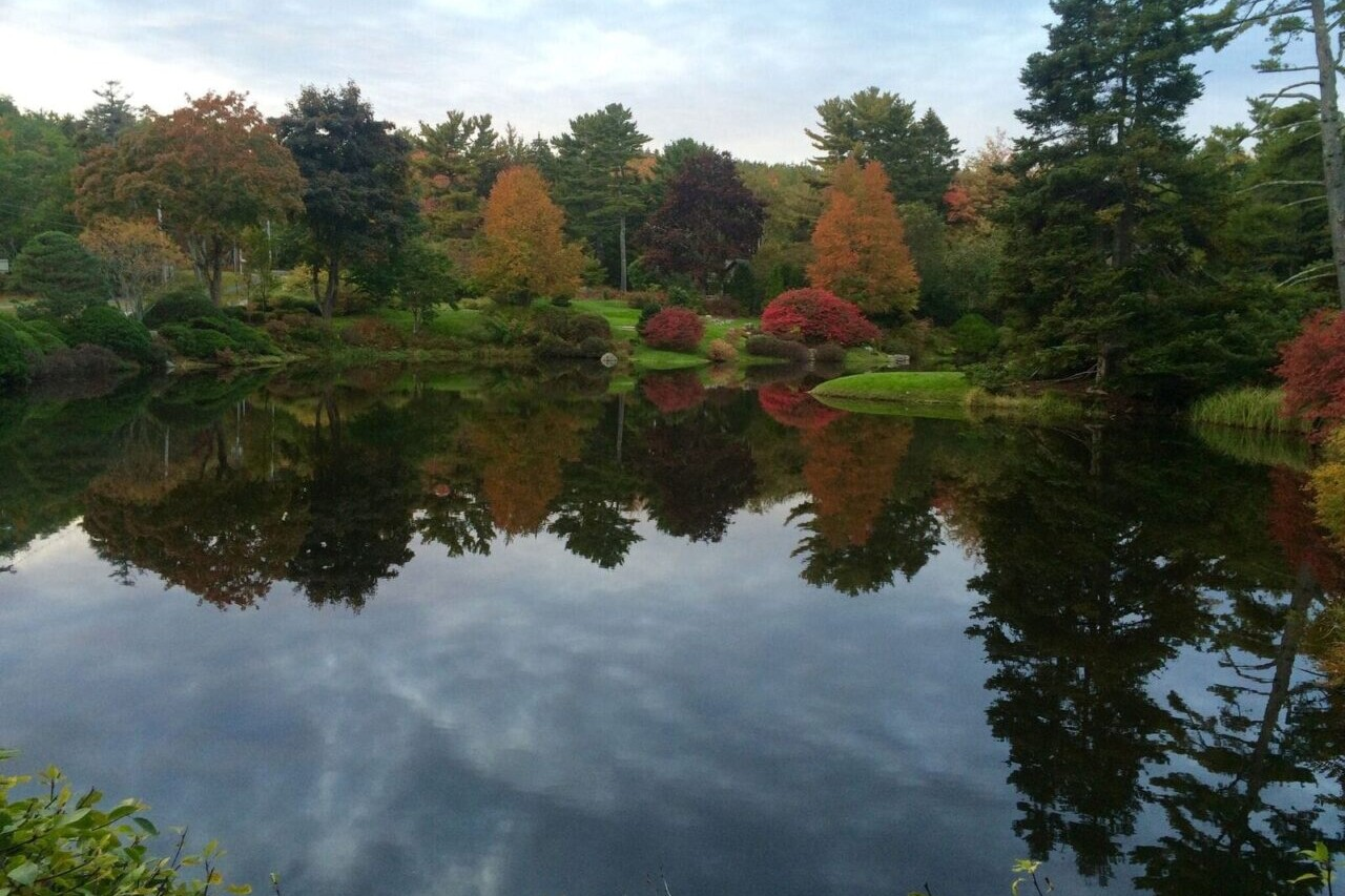 A pond reflects fall foliage from the forest surrounding it.