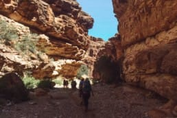 Hiking to Havasupai Falls through a canyon.