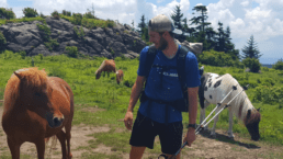 A hiker stands next to a horse on the Appalachian Trail.