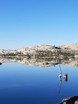 A reflection of a lake with a small mountain hill.