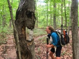 A woman looking at a tree that looks like it has a scary face.