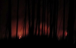 Fire blazes in the distance at night.