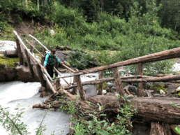 A woman crossing a river on a sketchy wooden tree bridge.