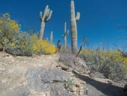 A hiker on the Arizona Trail.