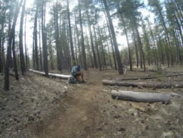 A hiker sitting on a log next to the trail.