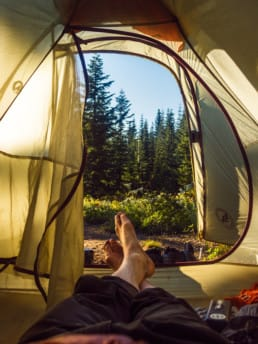 A view from inside a tent.