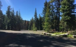 An empty gravel parking lot surrounded by evergreen trees.