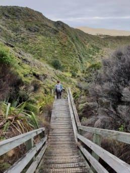 A hiker walking down stairs on the Te Araroa.