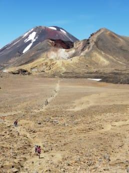 A view of the Te Araroa trail.