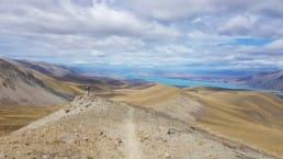 A view of the Te Araroa.
