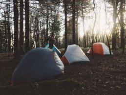 Tents set up in the forest on the Appalachian Trail.