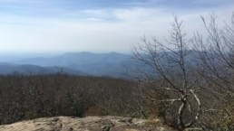 A view of distant blue mountains from a rocky outcropping