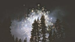 Fireworks illuminate the night sky over a coniferous forest.