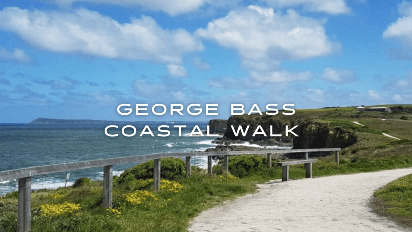 A walkway through a coastal grassy knoll with the sea visible to the left.
