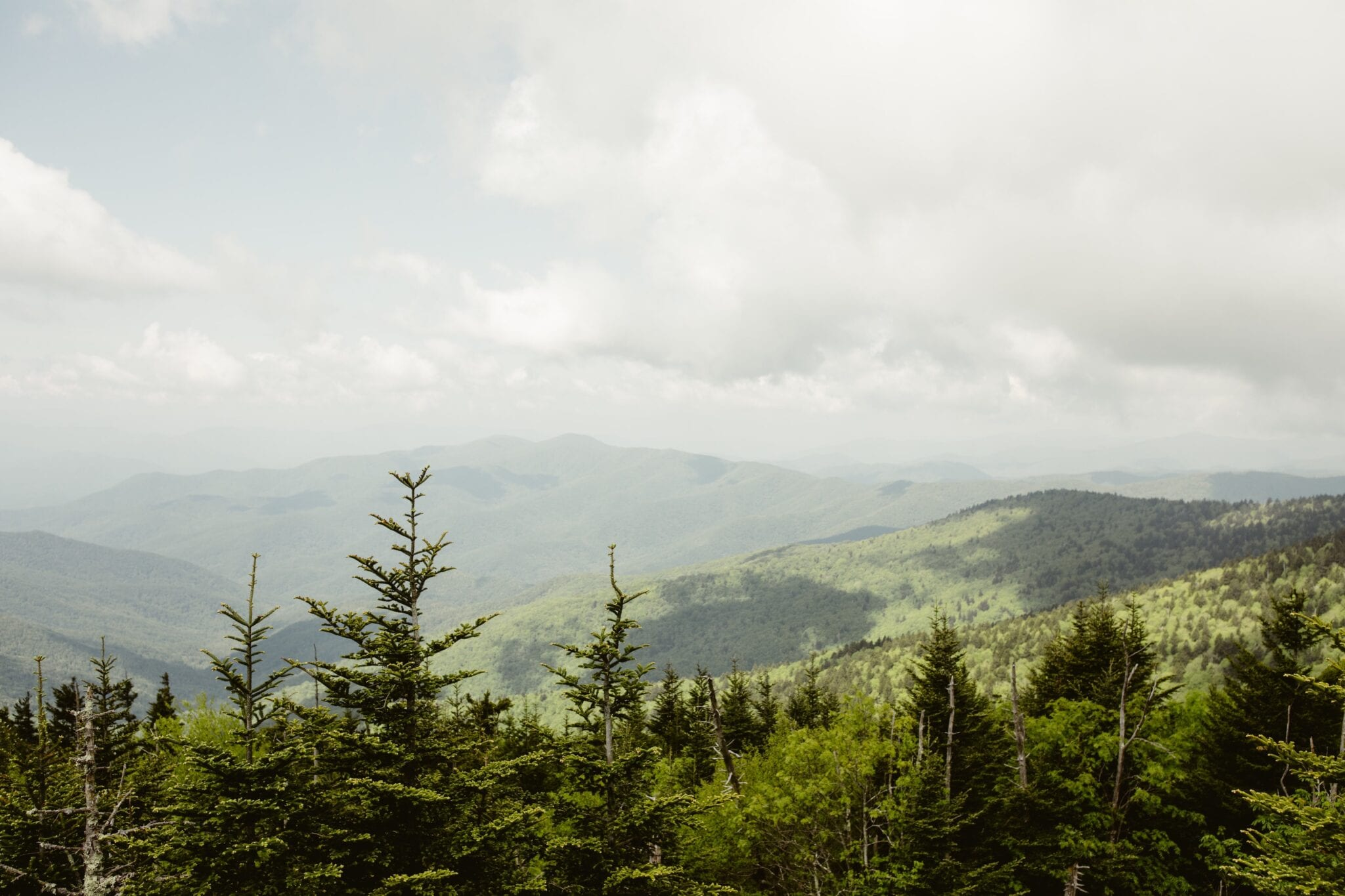 Clingmans Dome, Tennessee